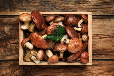 Fresh wild slippery jack mushrooms on wooden table, top view