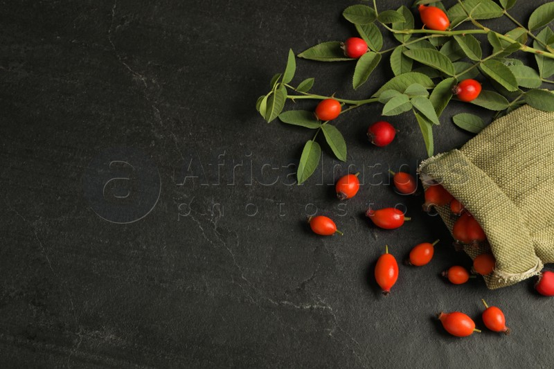 Ripe rose hip berries with green leaves on black table, flat lay. Space for text