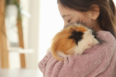 Little girl with guinea pig at home, space for text. Childhood pet