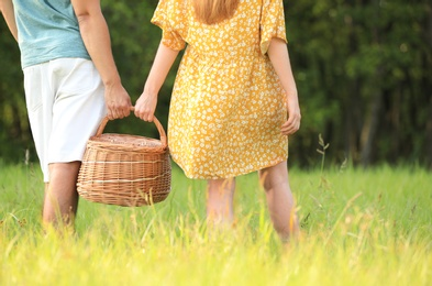 Young couple with picnic basket on green lawn