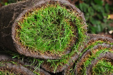 Closeup view of rolled sod with grass