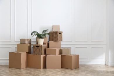 Heap of cardboard boxes and houseplant near white wall indoors, space for text. Moving day