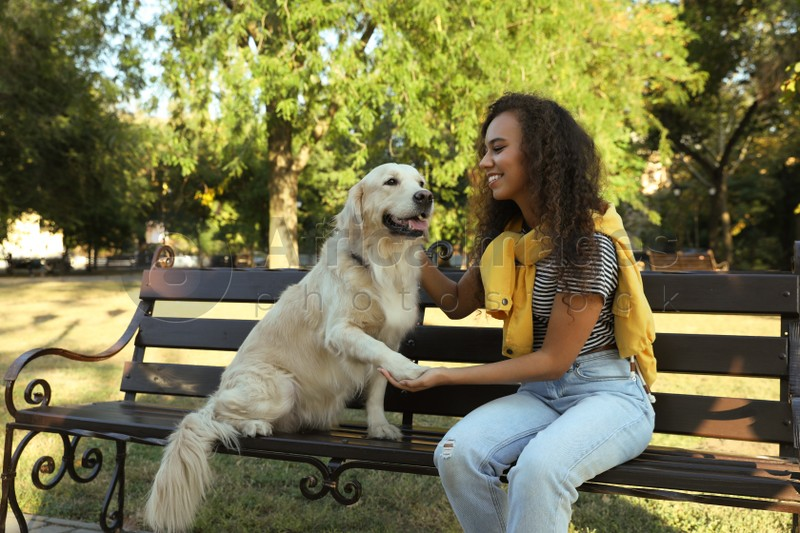 Young African-American woman and her Golden Retriever dog on bench in park