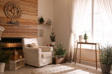 Potted fir trees and Christmas decorations in room with fireplace. Stylish interior design