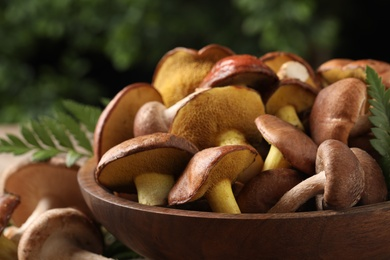 Different wild mushrooms in wooden bowl, closeup