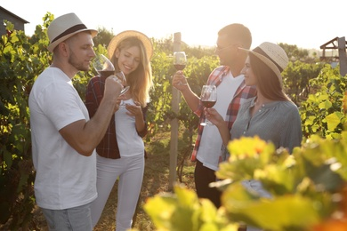 Friends tasting red wine in vineyard on sunny day