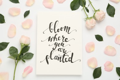 Frame of beautiful flowers and paper card with handwritten text Bloom where you are planted on white background, flat lay