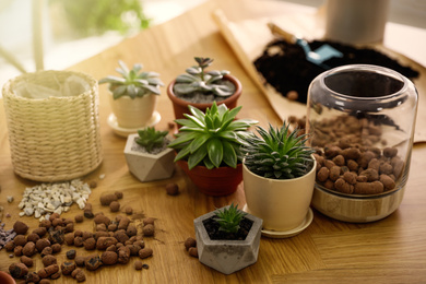 Beautiful potted plants and expanded clay on wooden table at home. Engaging hobby