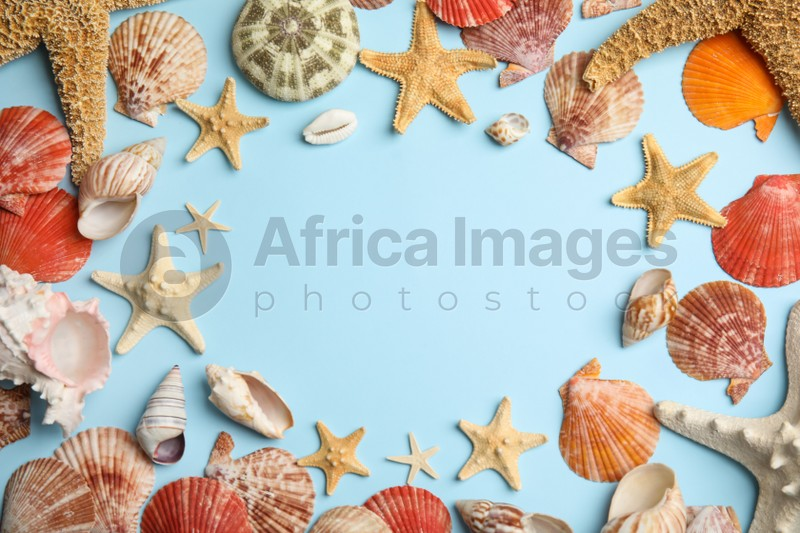 Frame of beautiful sea stars and shells on light blue background, flat lay. Space for text