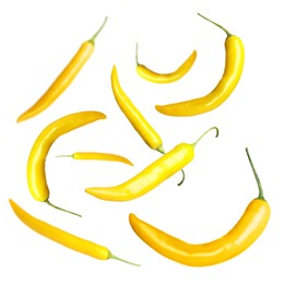 Ripe yellow chili peppers flying on white background