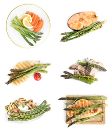 Set of different delicious meals with asparagus on white background, top view