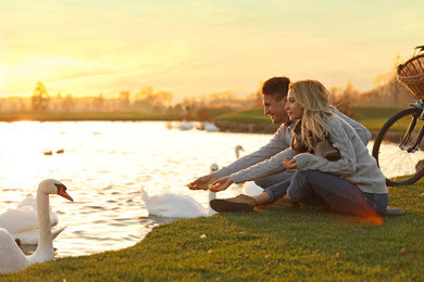 Young couple near lake with swans at sunset. Perfect place for picnic