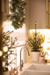 Beautiful kitchen decorated with potted firs. Interior design