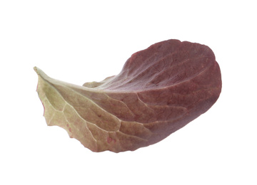 Leaf of fresh red lettuce isolated on white