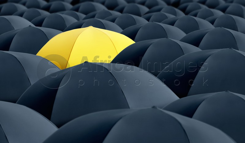 Yellow umbrella standing out of other ones