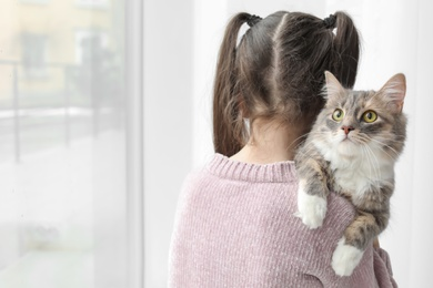 Cute little girl with cat near window at home