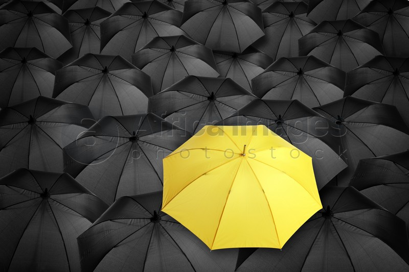 Yellow umbrella standing out of other ones, above view