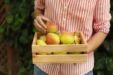 Woman holding wooden crate of fresh ripe pears outdoors, closeup