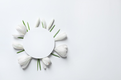 Beautiful spring crocus flowers and card on white background, top view. Space for text
