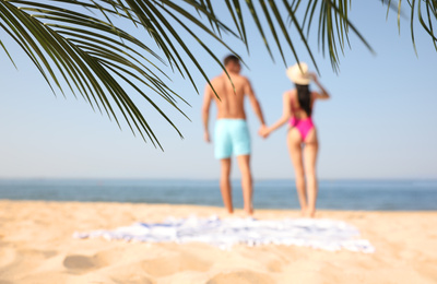Couple resting on sunny beach at resort, focus on palm leaves