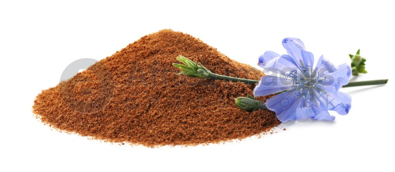 Pile of chicory powder and flower on white background