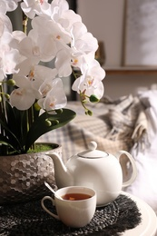 Beautiful white orchids and tea set on table in room