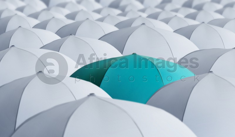Turquoise umbrella standing out of other ones