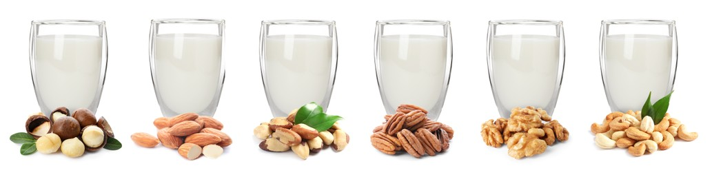 Set with different types of vegan milk and nuts on white background. Banner design