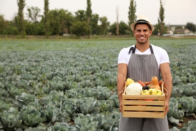 Farmer with wooden crate full of different vegetables in field. Harvesting time
