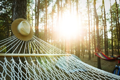 Empty hammocks, camping tent and bicycle in forest on summer day