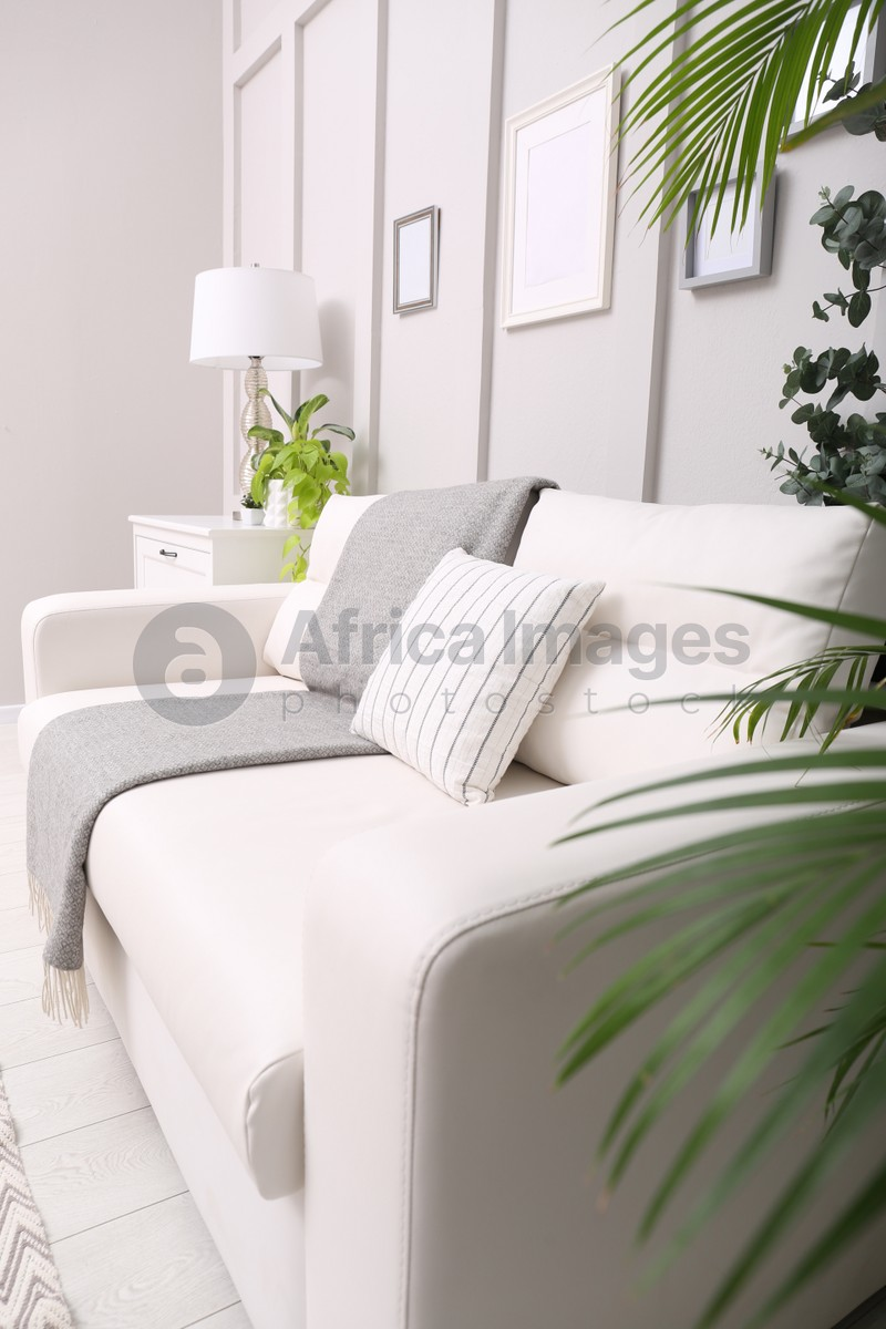Living room interior with white furniture, stylish accessories and houseplants