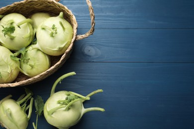 Whole kohlrabi plants on blue wooden table, flat lay. Space for text