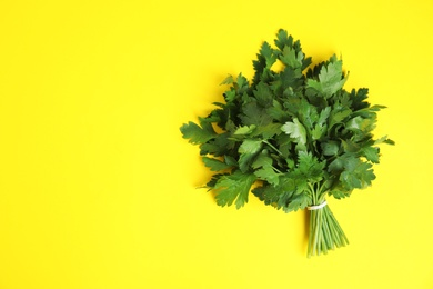 Bunch of fresh green parsley on color background, view from above. Space for text