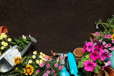 Flat lay composition with gardening equipment and flowers on soil, space for text