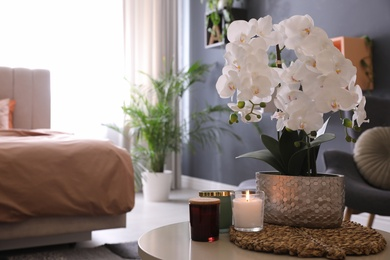 Beautiful white orchids and candles on table in room, space for text. Interior design