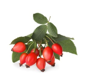 Ripe rose hip berries with leaves on white background