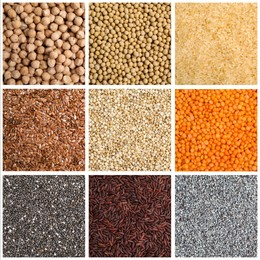 Collage with photos of different legumes and seeds. Vegan diet