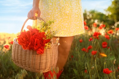 Woman with basket of poppies and wildflowers in field on sunny day, closeup