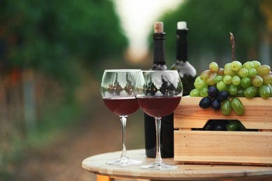 Bottles and glasses of red wine with fresh grapes on wooden table in vineyard
