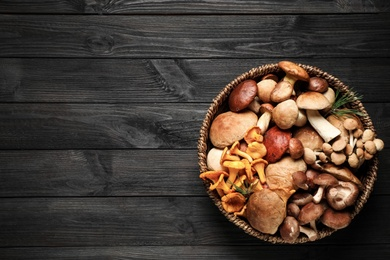 Different fresh wild mushrooms on black wooden table, top view. Space for text