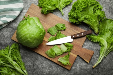 Different sorts of lettuce and knife on grey table, flat lay