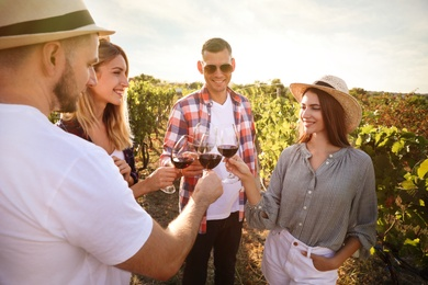 Friends clinking glasses of red wine in vineyard on sunny day