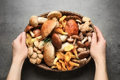 Woman holding wicker bowl with different wild mushrooms at grey table, top view