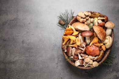 Different fresh wild mushrooms on grey table, flat lay. Space for text