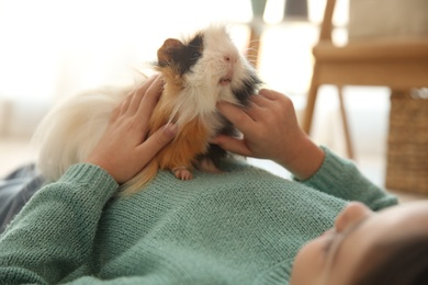 Little girl with guinea pig at home, closeup. Childhood pet