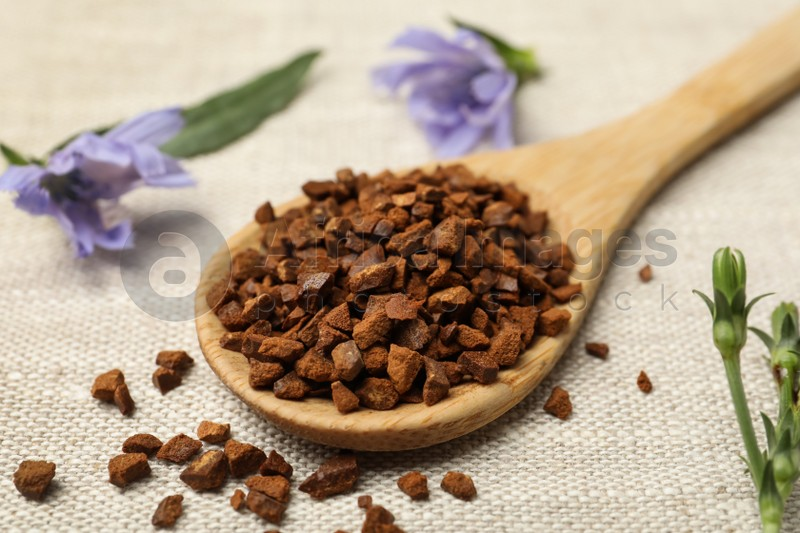 Wooden spoon of chicory granules on sackcloth, closeup
