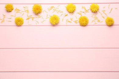 Flat lay composition with beautiful yellow dandelions on pink wooden table. Space for text