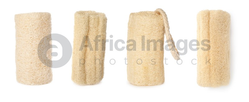 Set with natural shower loofah sponges on white background. Banner design