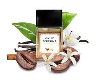Bottle of perfume and different spices on white background