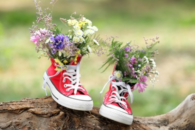Beautiful flowers in shoes on log outdoors